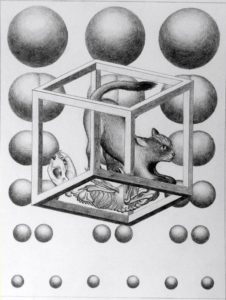 Schrodinger's cat equation