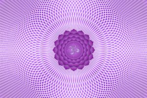 Blog - Violet Crow - crown chakra